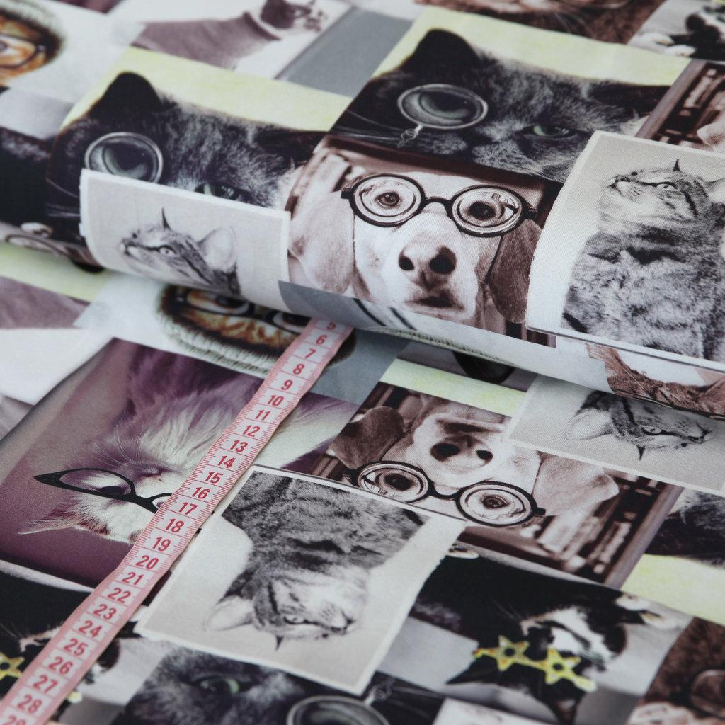 jersey stoff hunde katzen digitaldruck g nstig kaufen. Black Bedroom Furniture Sets. Home Design Ideas